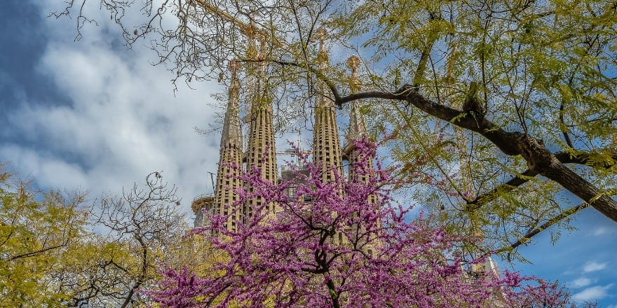 Sagrada Familia - Vera Smout - Noticias Outlet en Barcelona 327 - Abril 2019