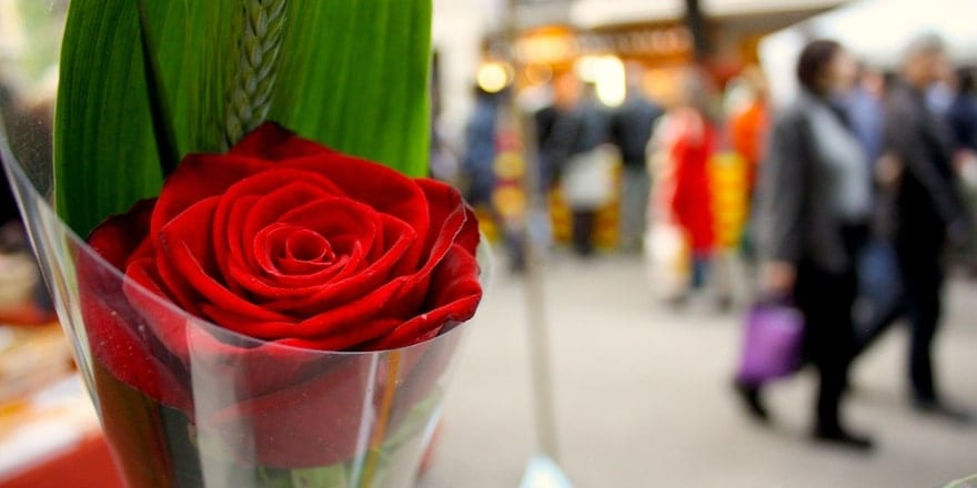 Sant Jordi 2012 - Flickr Elisa Rodrigo - Noticias Outlet en Barcelona 328 - Abril 2019